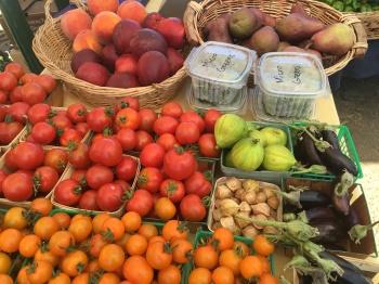 Summer Farmstand, 2016